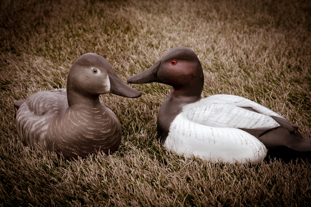 Wooden decoys