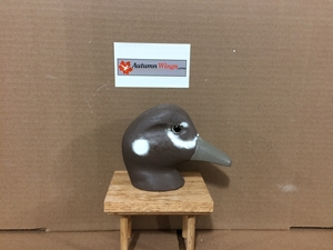 Harlequin Decoy Heads