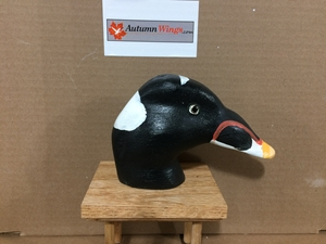 Scoter Decoy Heads