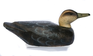 Series 72 Black Duck - BDC-11-BDP