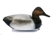 Series 72 Canvasback - BDC-Canvasback