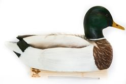 Hand Carved Mallard Decoy